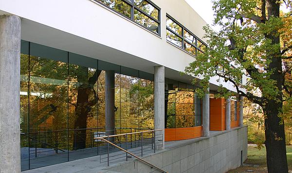 Reinschnuppern ins Hochbegabtenzentrum: Informationstag am Musikgymnasium Schloss Belvedere Weimar