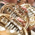 Horn im Konzert